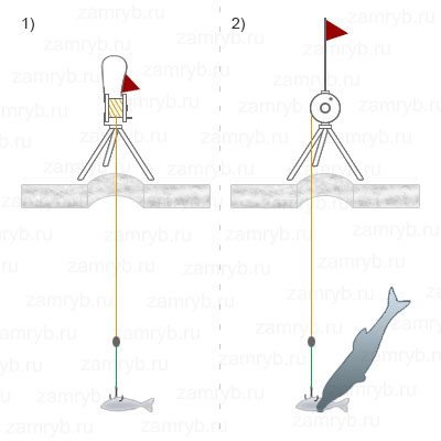 Зимняя рыбалка на щуку на жерлицы – практика 2020 года